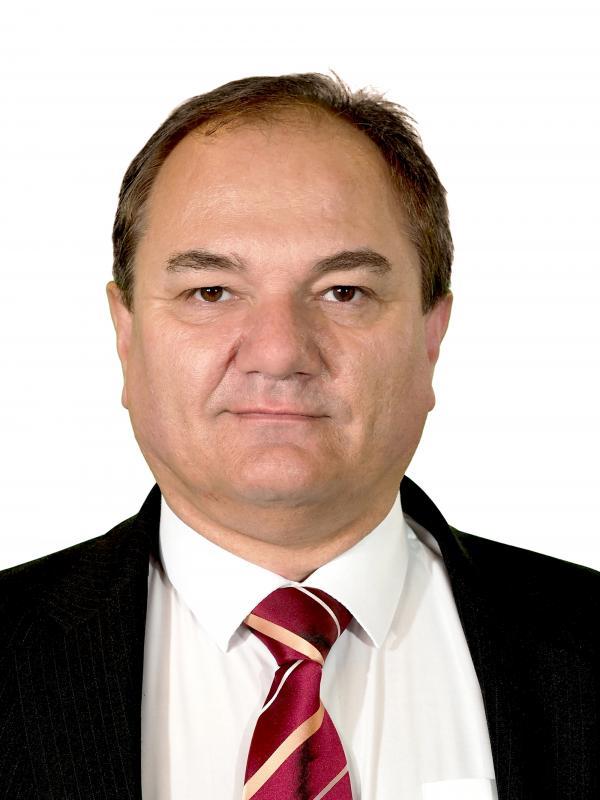 Ing. Josef Janeček